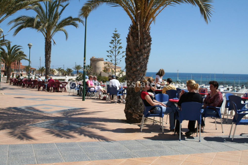 Real Estate Costa Blanca, Mil Palmeras Spain