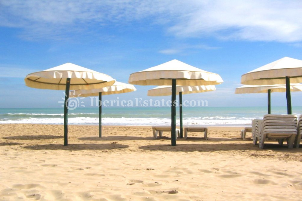 Real Estate Costa Blanca, Algorfa Spain